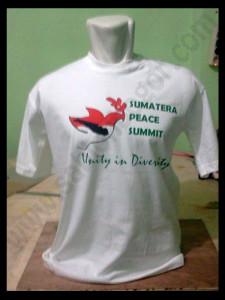 Kaos Sumatera Peace Summit